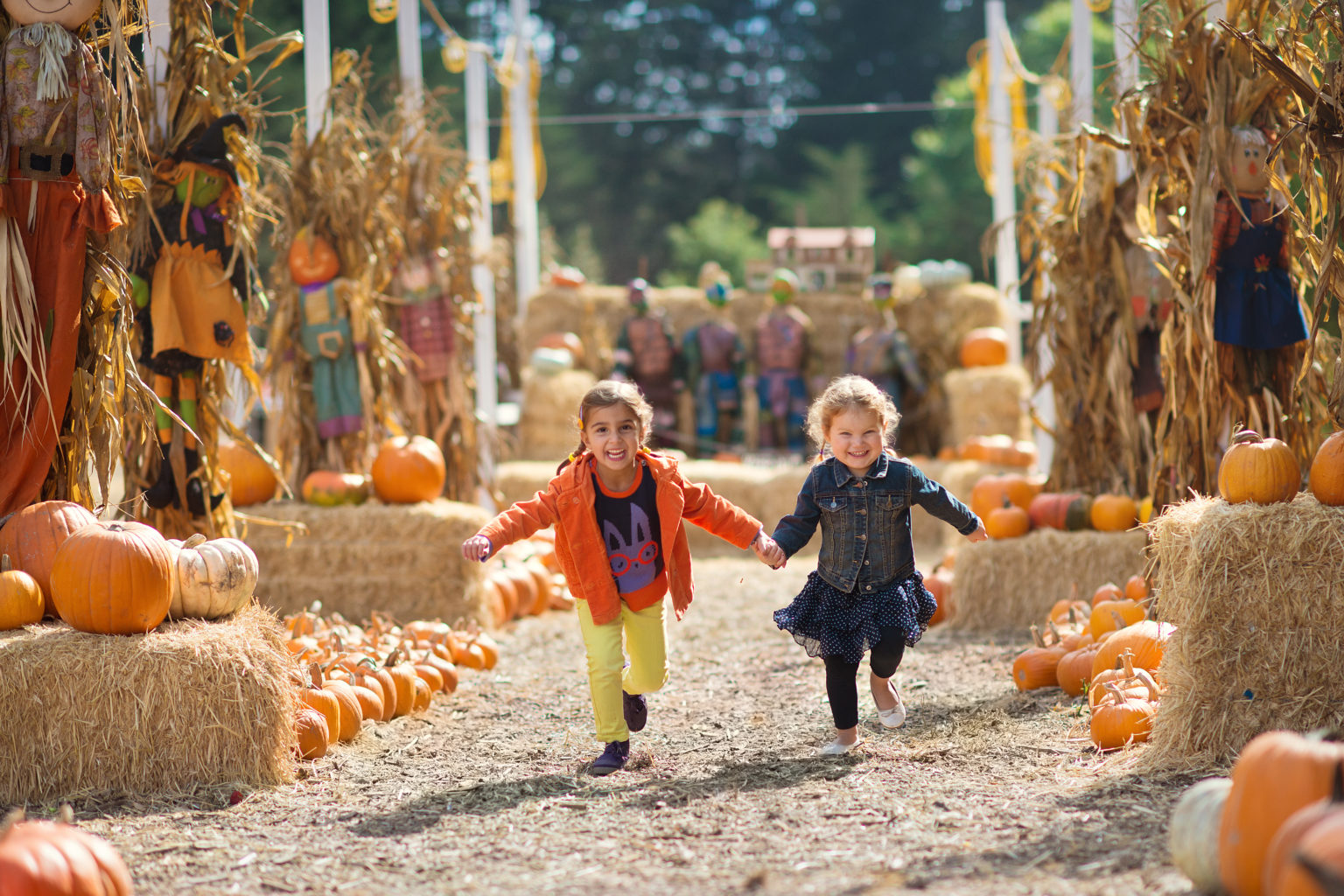 Two,Girls,Running,At,The,Pumpkin,Patch